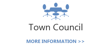 The Town Council